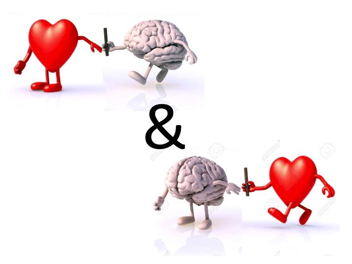 cerveau-coeur-et-coeur-cerveau